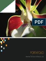 Portafolio Fotosintesis Colombia