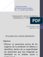 El Trabajador Social en Mexico Desarrollo y Perspectivas