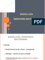 Shigeloza