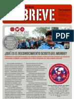 """Reconocimiento """"Scouts del Mundo"""""""