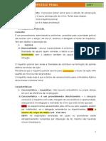 Processo Penal Lfg Intensivo 2014