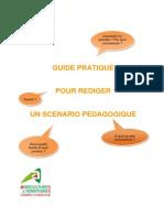 DI Guide Pratique Scenario Pedagogique