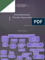 PROCEDIMIENTOS PENALES ESPECIALES.pptx