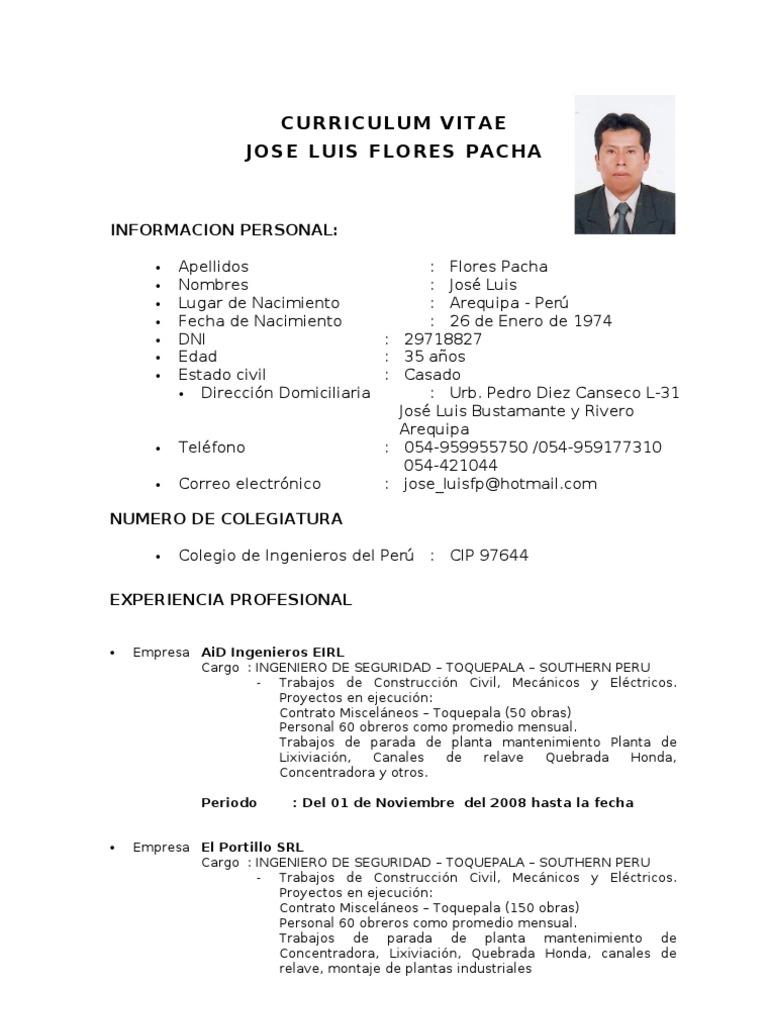 Fantástico Formato De Curriculum Vitae Ingeniero De Mantenimiento ...