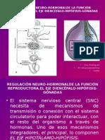 Regulación Neuro-hormonalde La Función Reproductora