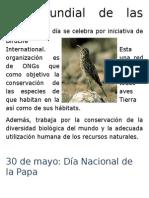 Dia Mundial de Las Aves Este Día Se Celebra Por Iniciativa de BirdLife International