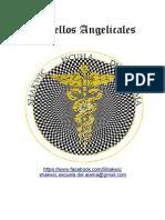 Sintoniacion de los 49 sellos angelicales.pdf