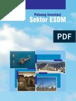 Buku Investasi ESDM Indonesia FINAL-1