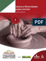 Apostila 03 Cultura e Diversidade - Noções Iniciais v2 (1)