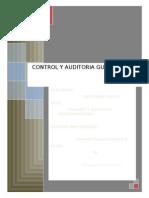 Control y Auditoria Gubernamental