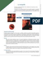 1_arte_NB4-7B.pdf
