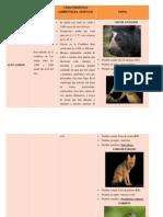 Pisos Zoogeográficos Altoandino