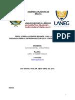 Perfil de Mercado Cebolla Cambray (1)