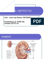 Riview Sindrom-nefrotik Ppt