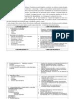 11. Didáctica de Matematica