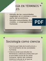 TERMINOLOGIA B+üSICA
