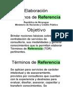 Diapositivas de Tdr