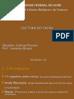 Aula Cacau