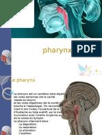 pharynx.ppsx