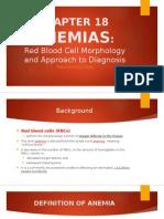 Chapter 18 Anemia Hematology PPT
