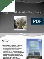Organizaţia Naţiunilor Unite 2003