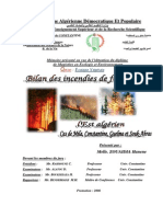 bilan des incendies des forets