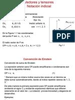 Notacion Indicial -Bis