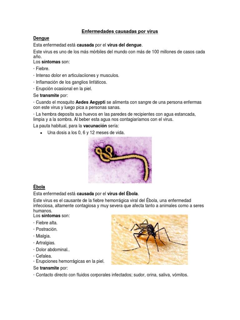 que es una enfermedad viral pdf