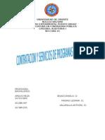 Contratacion y Servicios de Programas de Auditoria