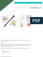 Alkalosis. Causes, symptoms, treatment Alkalosis.pdf