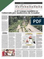 La frontera en el Cenepa también es vulnerada por madereros de Ecuador