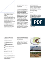 Deterioro Ambiental.docxtriptico.docx