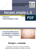 Herpes Simple I, II Joss