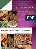 plantas alimenticias (2)