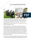 Hpang Jahtum Na Shanglawt Majan Kaba a Matu