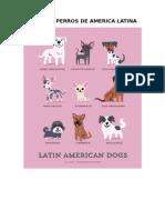 Tipos de Perros de America Latina