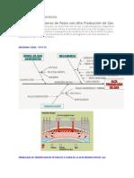 Analisis de Problemas de Pozos Con Alta Produccion de Gas