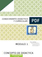 Conocimiento Didáctico y Curricular Modulo 1 1.1