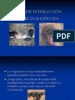 Tipos de Interaccion Ecologicas