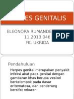 Herpes Genitalis Ppt