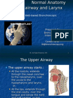 Anatomy Upper Airway & Larynx