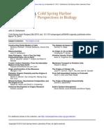 Ribonucleotides (1)