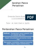 DT-HPP