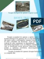 Dumitra Georgiana - Treapta Biologică de Epurare a Apelor Uzate