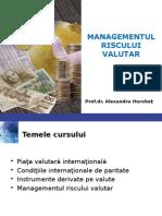 Managementul Riscului Valutar