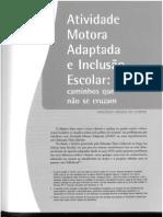 AMA e inclusão escolar.pdf