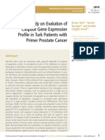 A Study on Evalution of Caspase Gene Expression Profile in Turk Patients with Primer Prostate Cancer