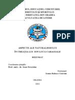 Craciun-Ioana-Raluca-rezumat.pdf
