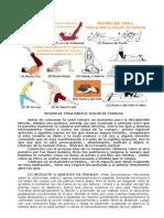 Sesión de Yoga para el Dolor de Espalda