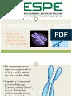 Cromosomas y Adn Final